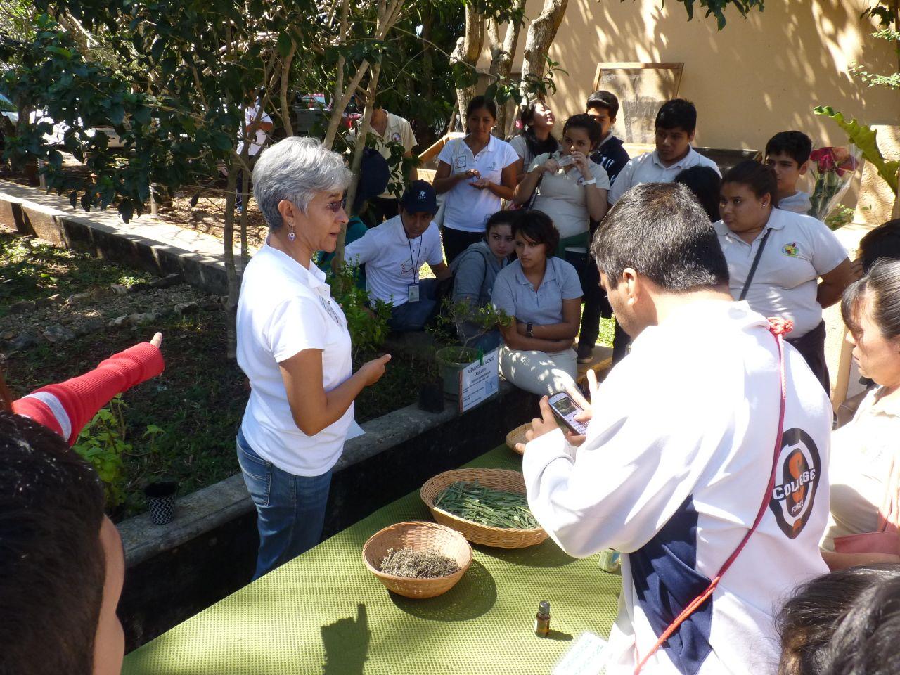 Buscan acercar a comunidad yucateca a la ciencia