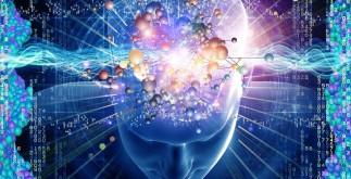 cerebro_memoria