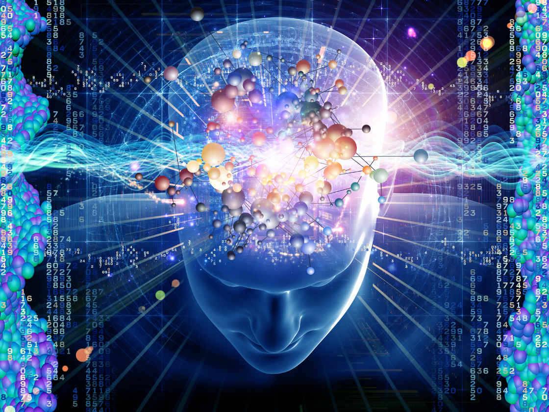 Nuestro cerebro tiene tanta capacidad de memoria como todo internet