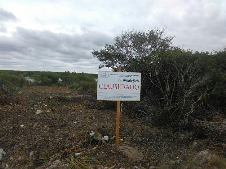 Clausuran 12 predios en Yucatán; registran daño a especies amenazadas