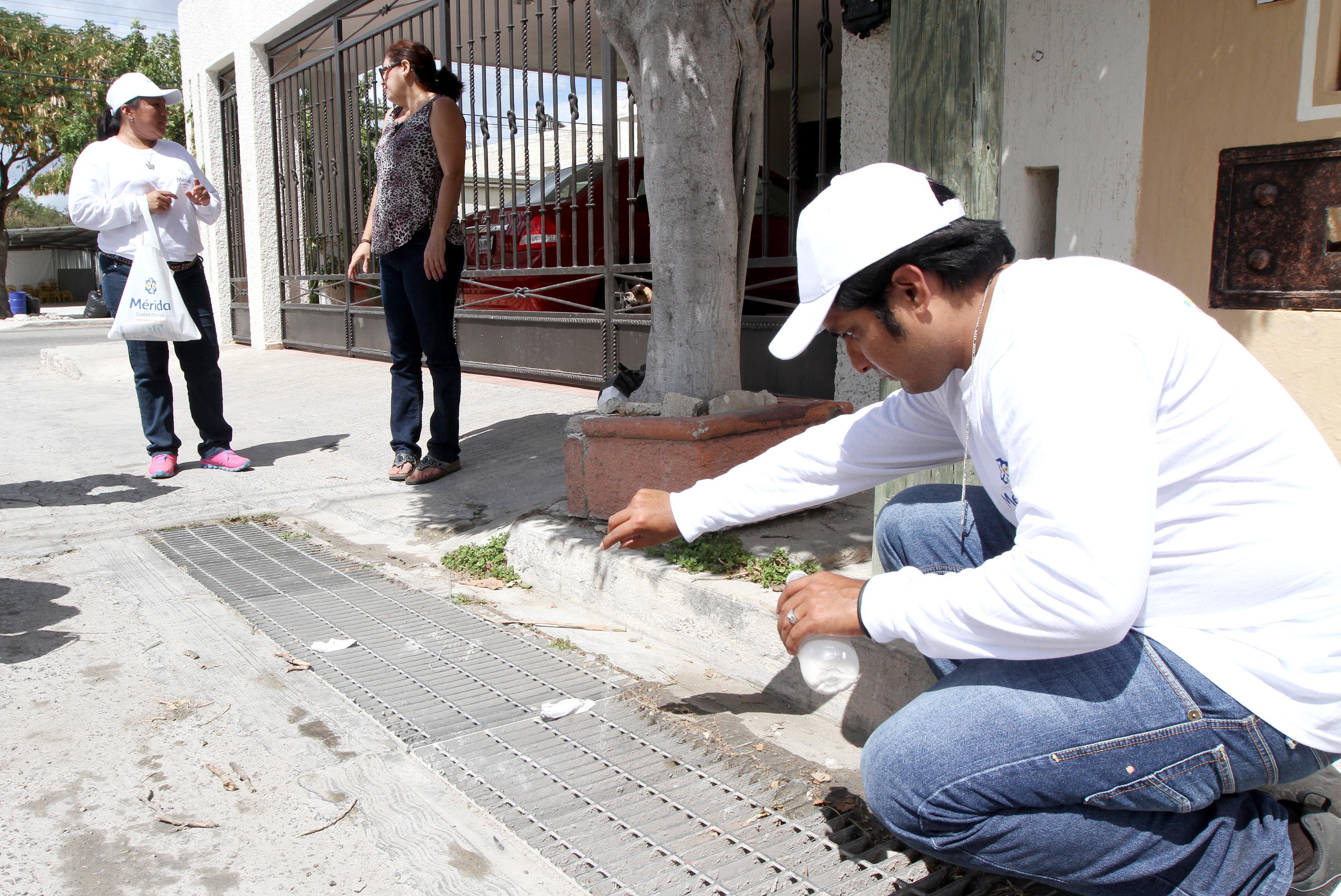 Van empleados municipales de Mérida a combatir moscos