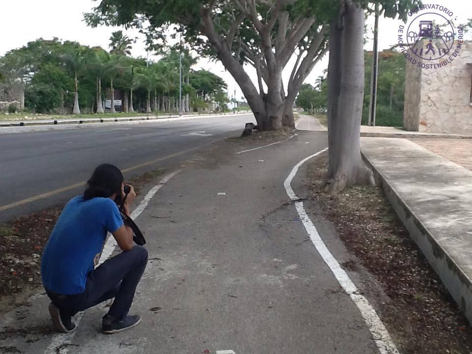 Ven riesgosas ciclovías de municipio de Mérida