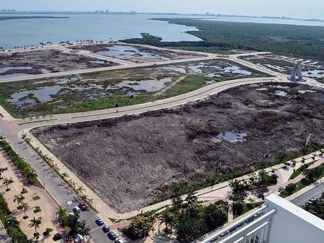 Ordena Tribunal se restituya el manglar en Tajamar