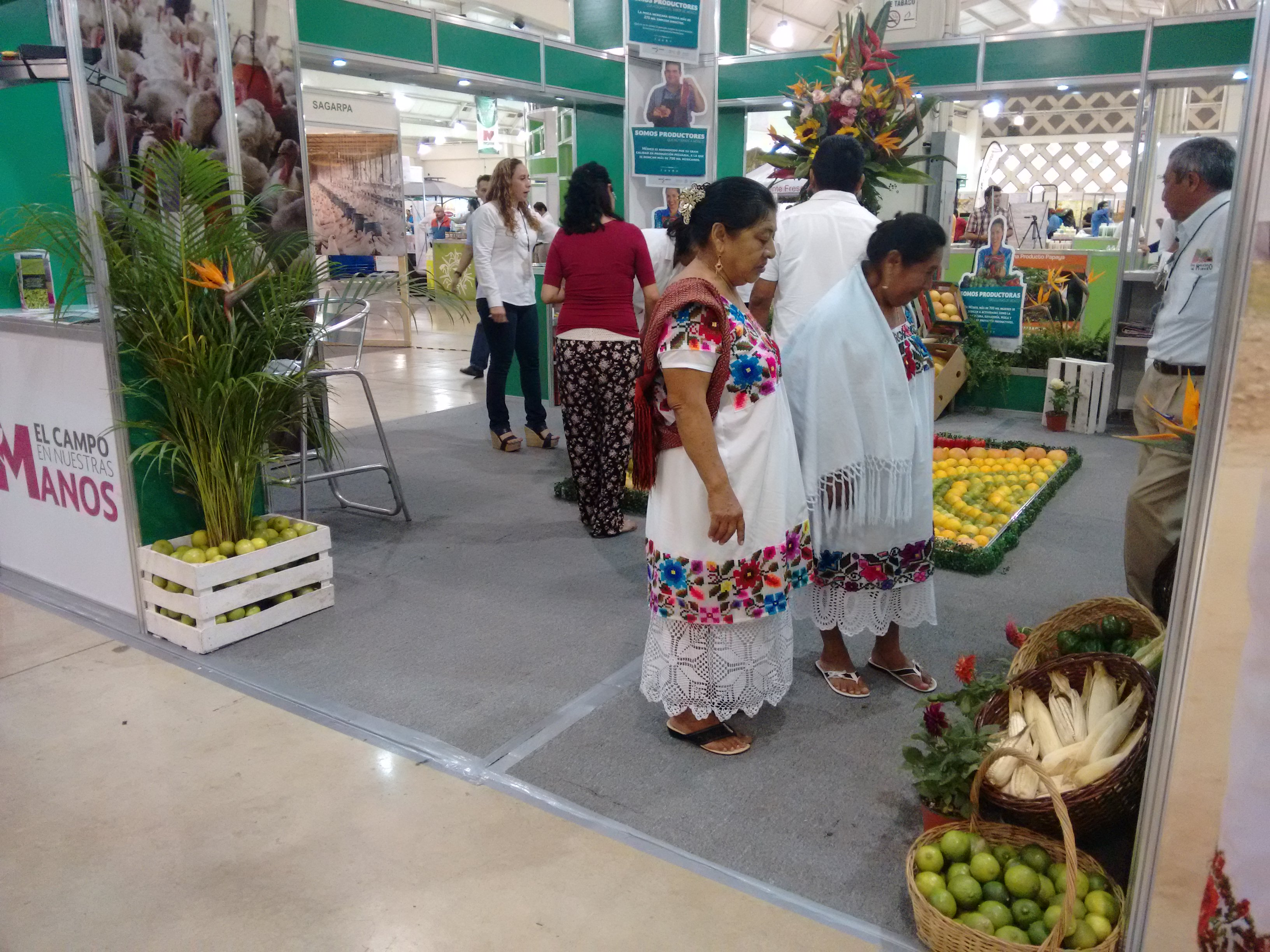 Expo Campo, magna muestra agropecuaria en Yucatán