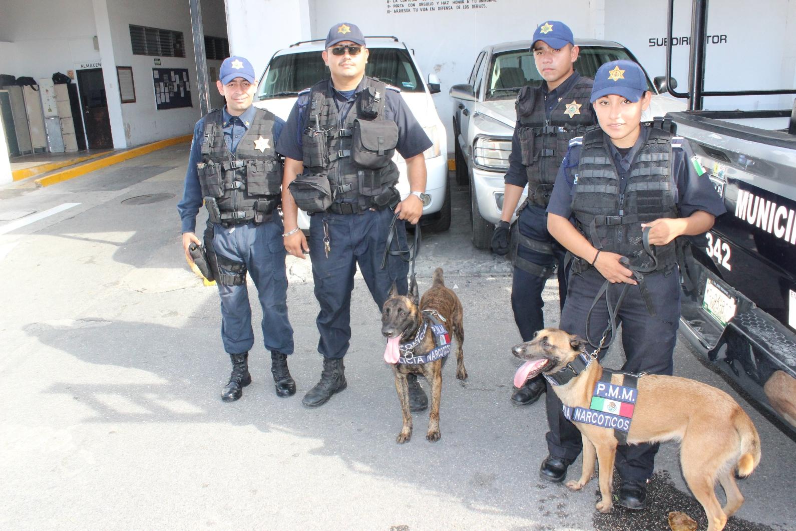 Agentes caninos de Policía Mérida reciben certificación internacional