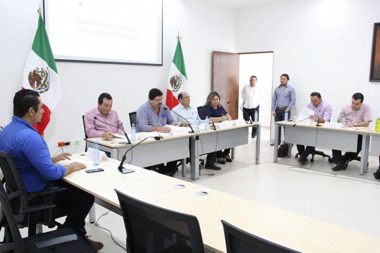 Congreso Yucatán recibe iniciativa para evitar discriminación
