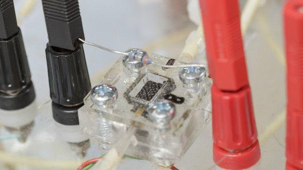 La batería en miniatura que transforma orina en electricidad