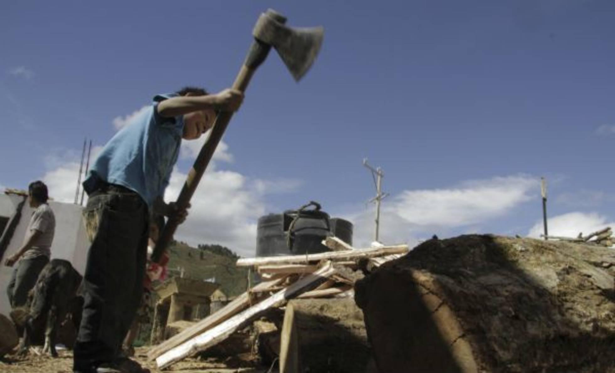 Dos millones de niños trabajan en México.- Save the Children
