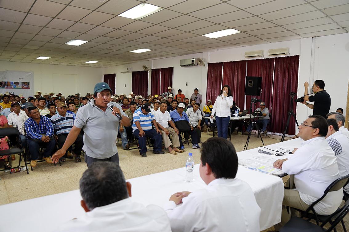 Pese a prohibición, siembran soya transgénica en Campeche