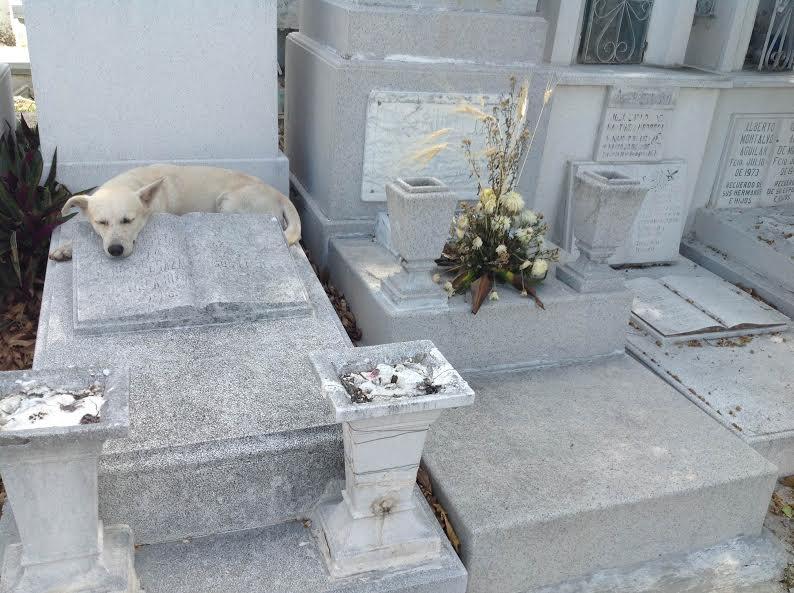 cementerio_mid2