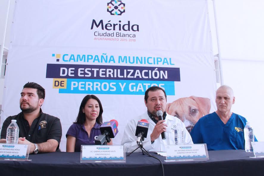 Cirugías gratuitas para esterilizar mascotas en Mérida