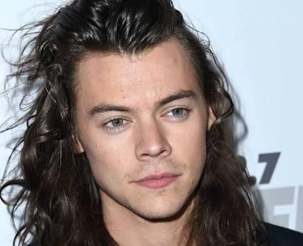 Harry Styles comenzará carrera en solitario