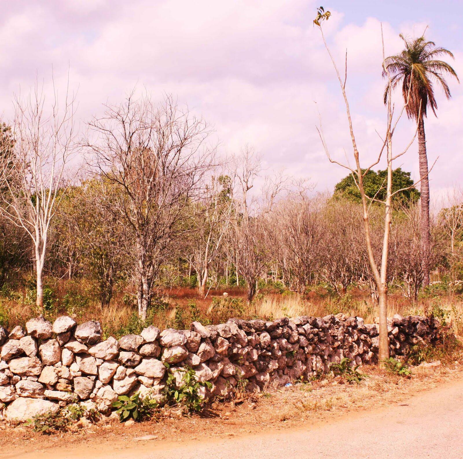 Más sequía y erosión en Península de Yucatán