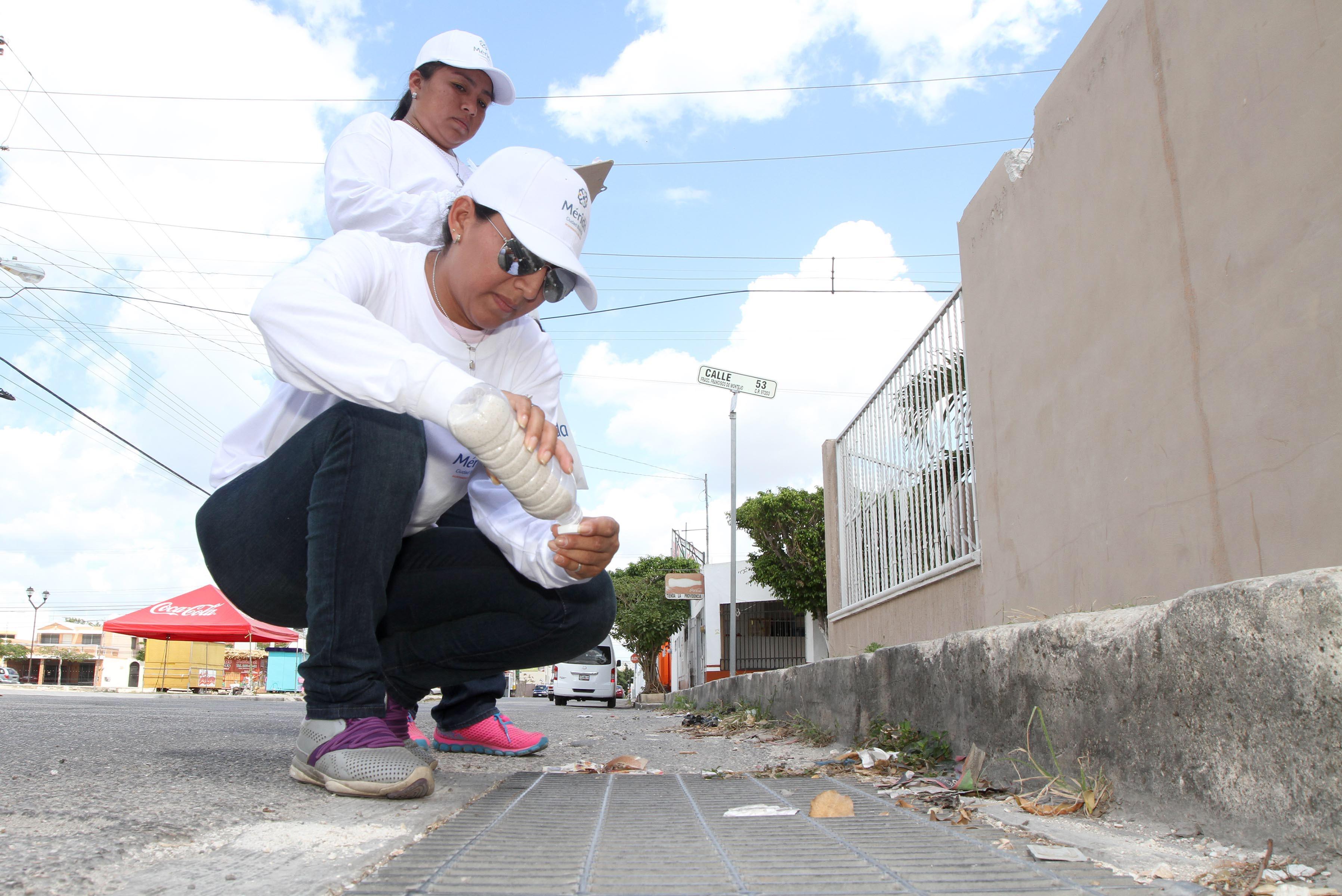 Preparan en Mérida 3a. campaña de abatización