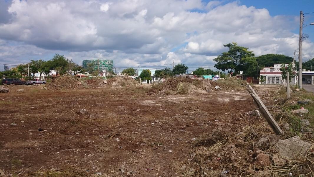 Esperan reducir déficit de áreas verdes en Mérida