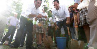 vila_caballero_reforestacion
