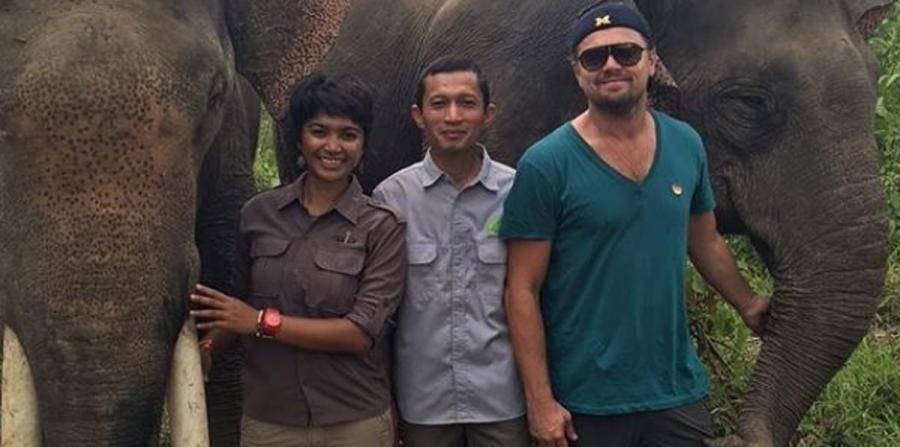 DiCaprio dona 15 mdd para el medio ambiente