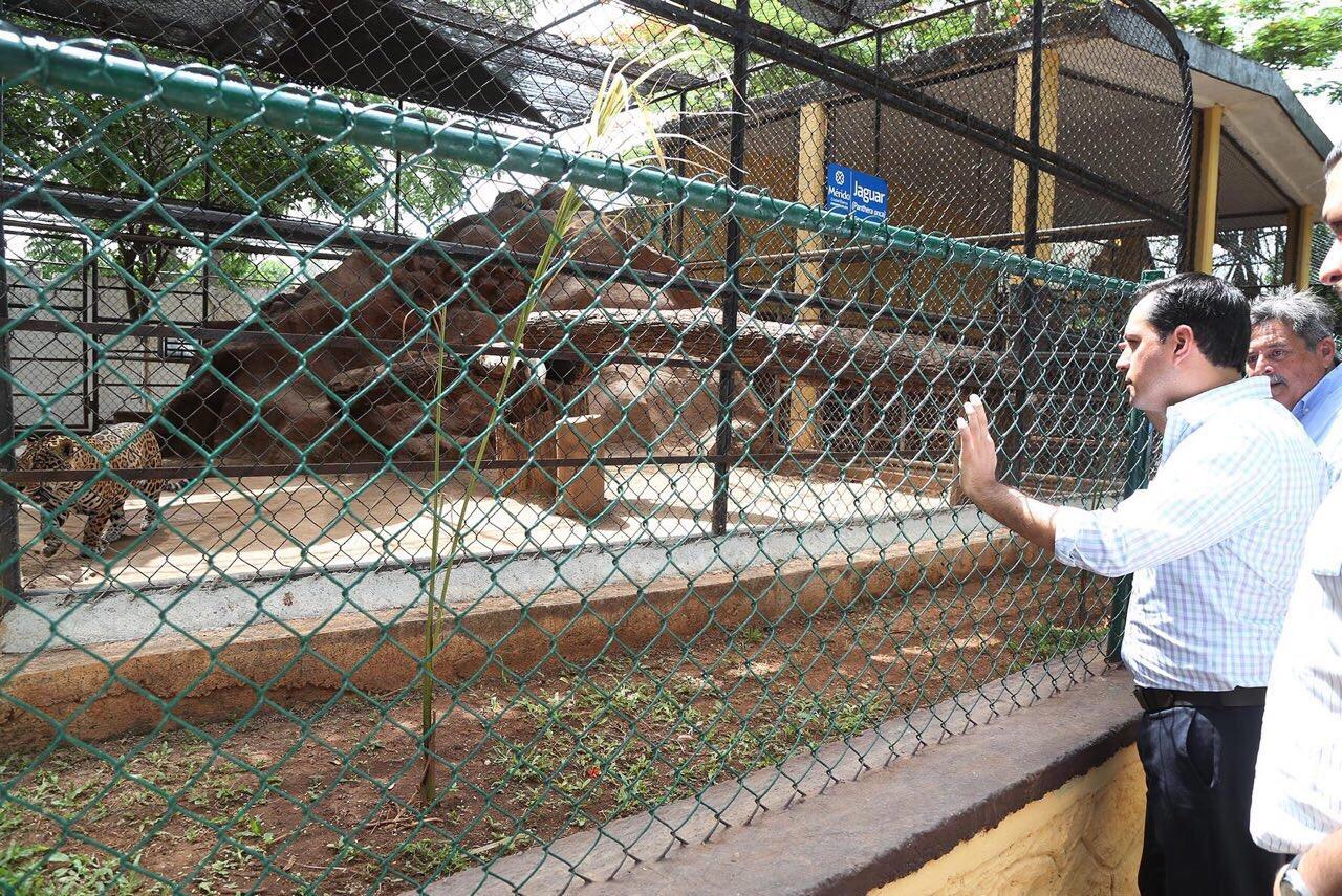 Ampliaciones y adecuaciones en zoológico de La Mulsay