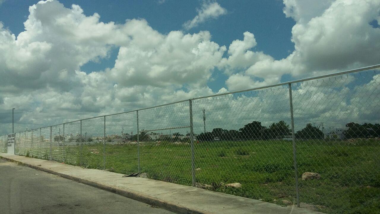 Ante quejas y sanciones propietarios de terrenos baldíos limpian sus propiedades