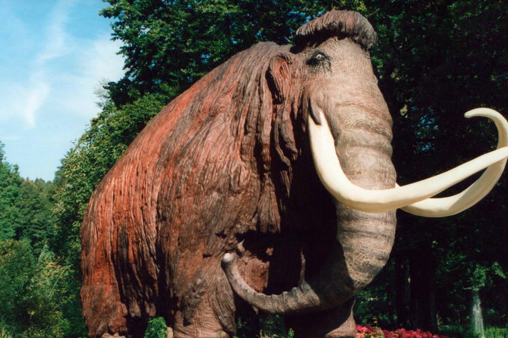 Mamuts se extinguieron por falta de agua