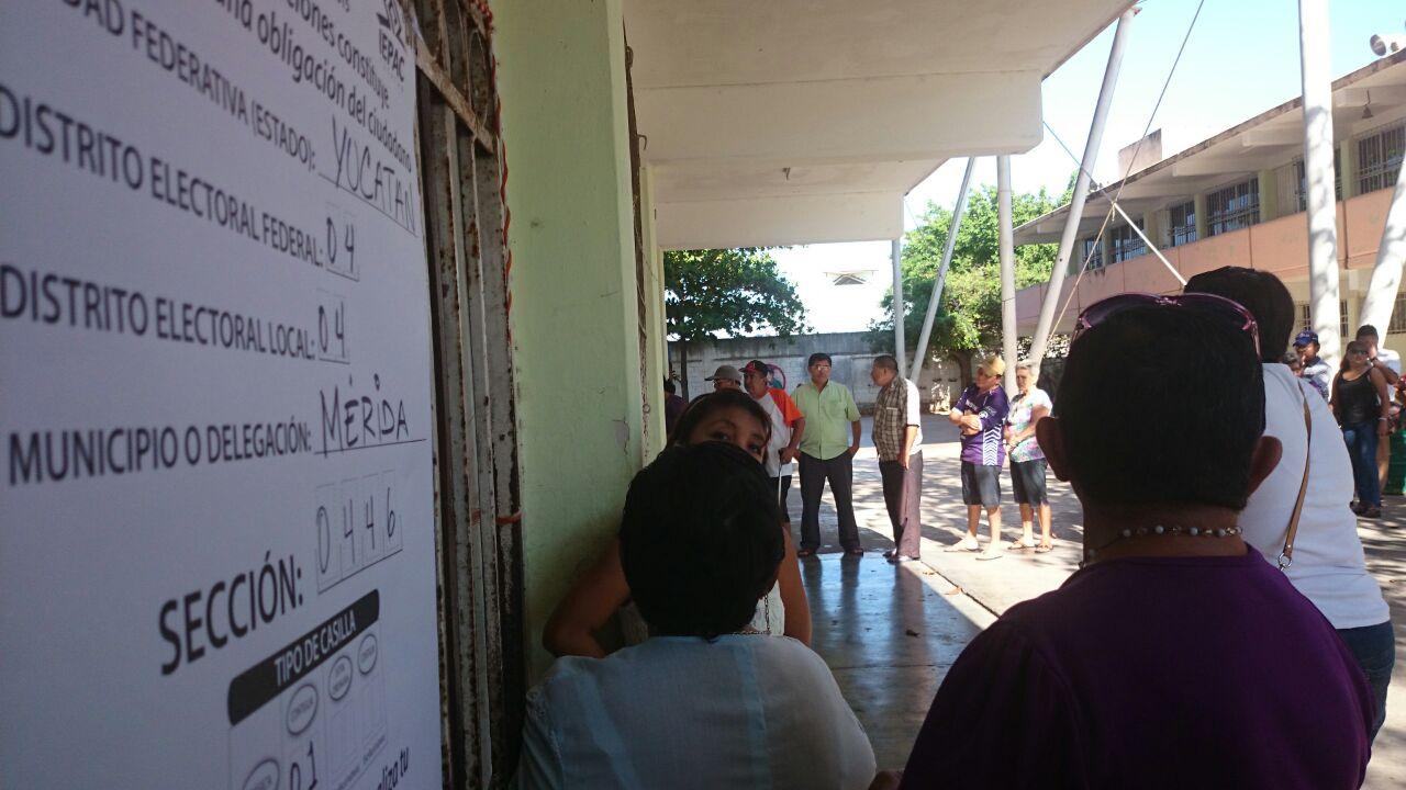 'A río revuelto…', Panal-Yucatán explora opciones