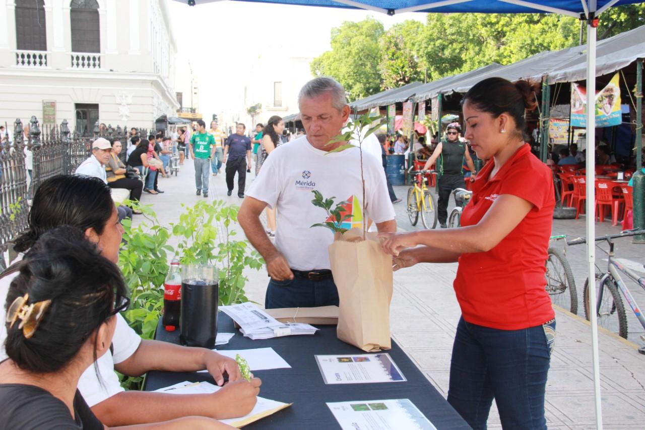Dan en adopción más de mil árboles en Mérida
