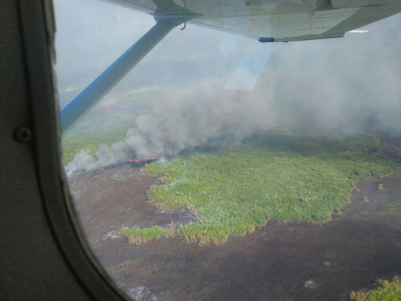 Afecta incendio Reserva de Biosfera en Dzilam de Bravo