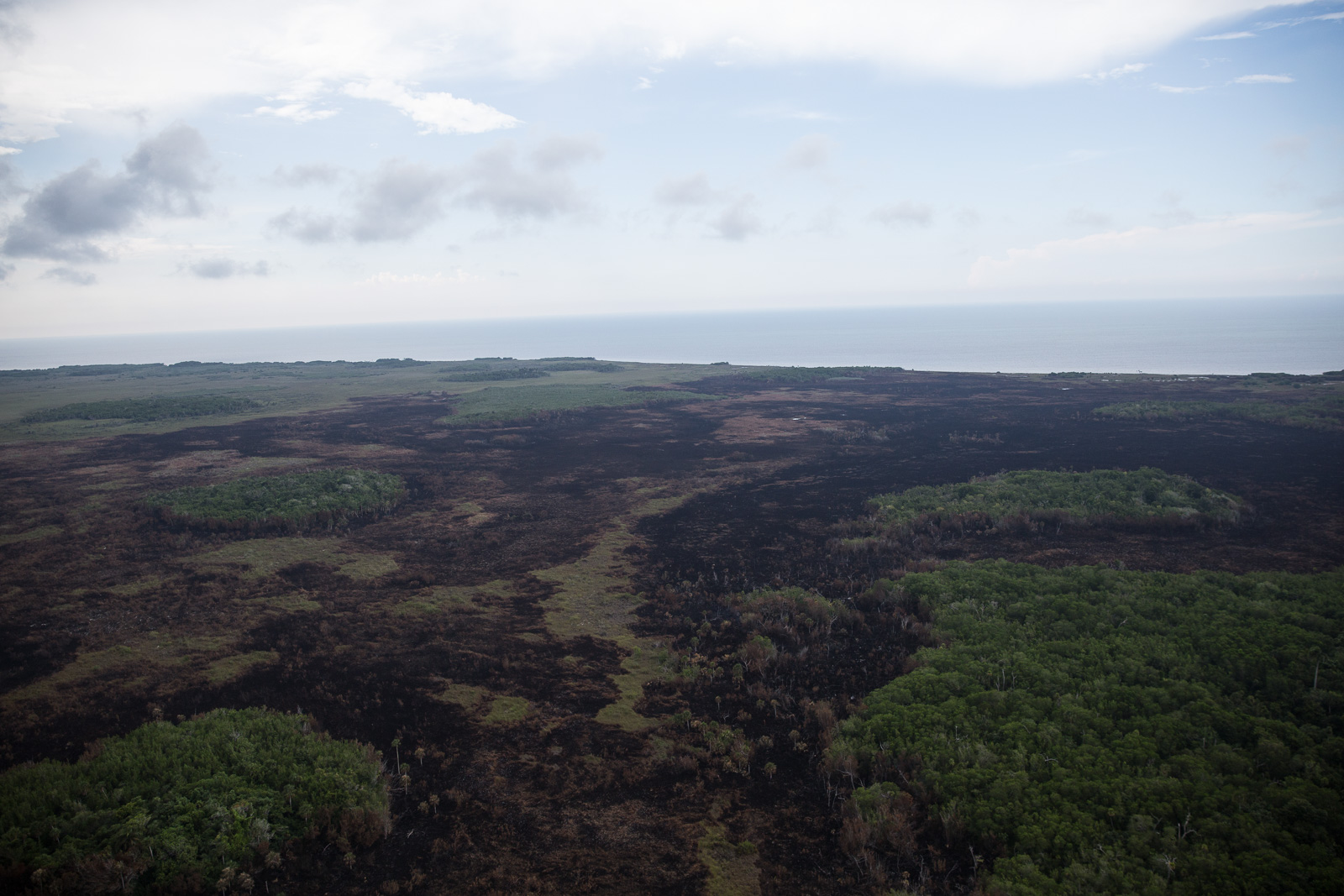 Dañadas mil hectáreas en Yucatán por incendio