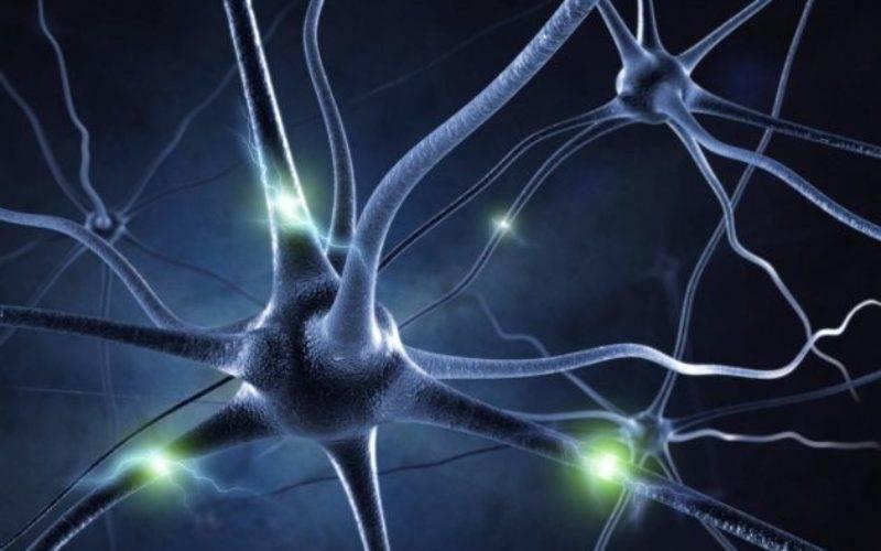 La ciencia, más cerca de descubrir de qué se trata el sexto sentido