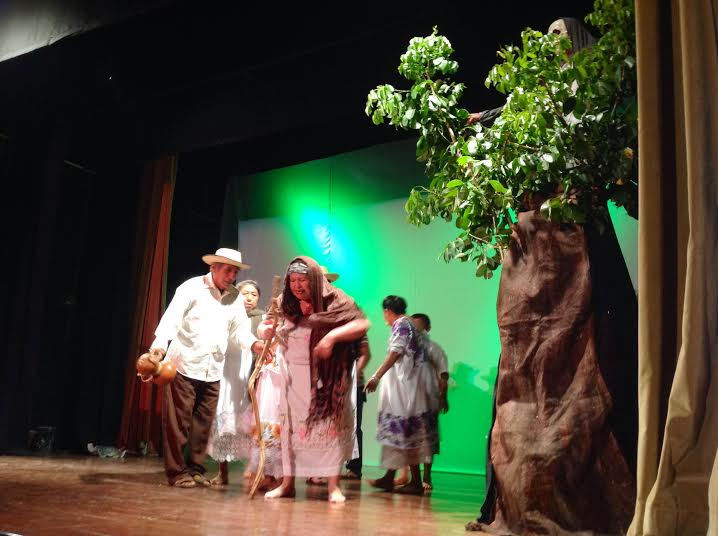 Divertida historia sobre un árbol de huaya