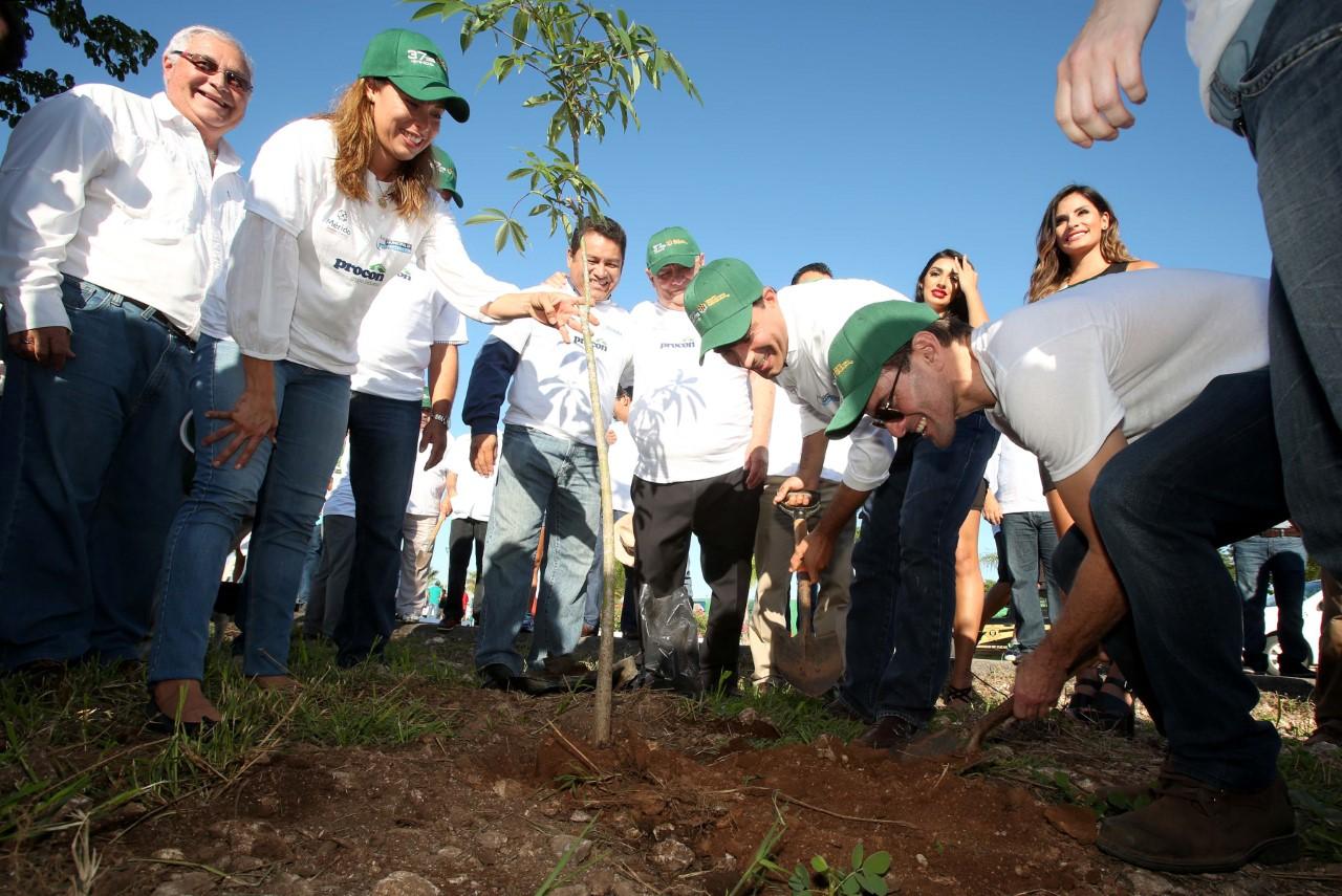 Siembran 3 mil árboles en Gran Santa Fé