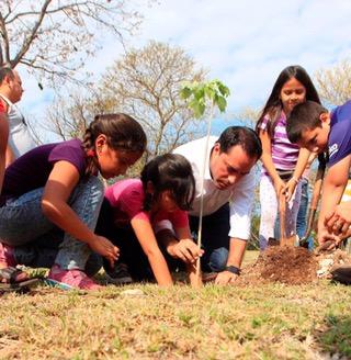 Reanudan programa de arborización en escuelas de Mérida