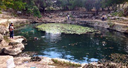 cenote_yuc3