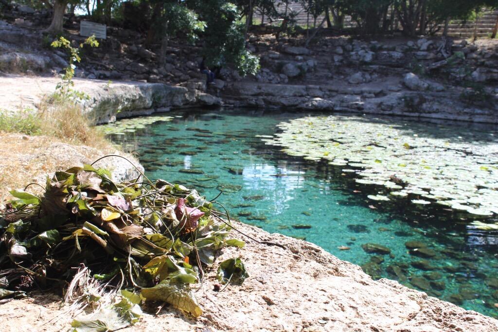 Cenote de Dzibilchaltún se encuentra amenazado