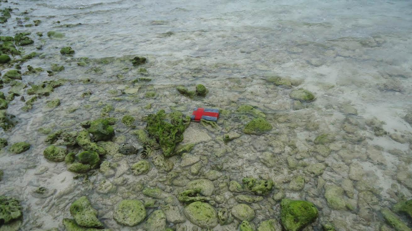 Aseguran más de 11kg de cocaína en Isla Pérez, Yucatán
