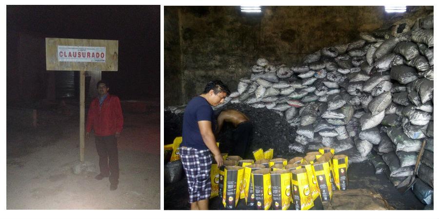 Aseguran 126.4 toneladas de carbón vegetal en Conkal