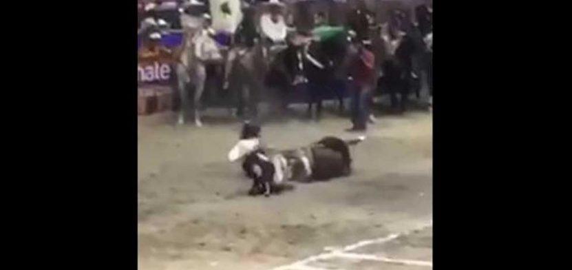 velasco_caballo