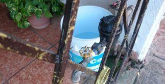 agua_potable2