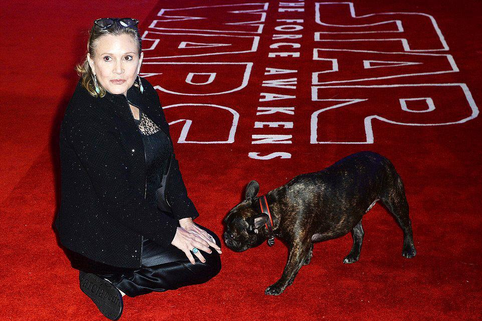 Gary, el perro de Carrie Fisher, 'dijo adiós' a su dueña
