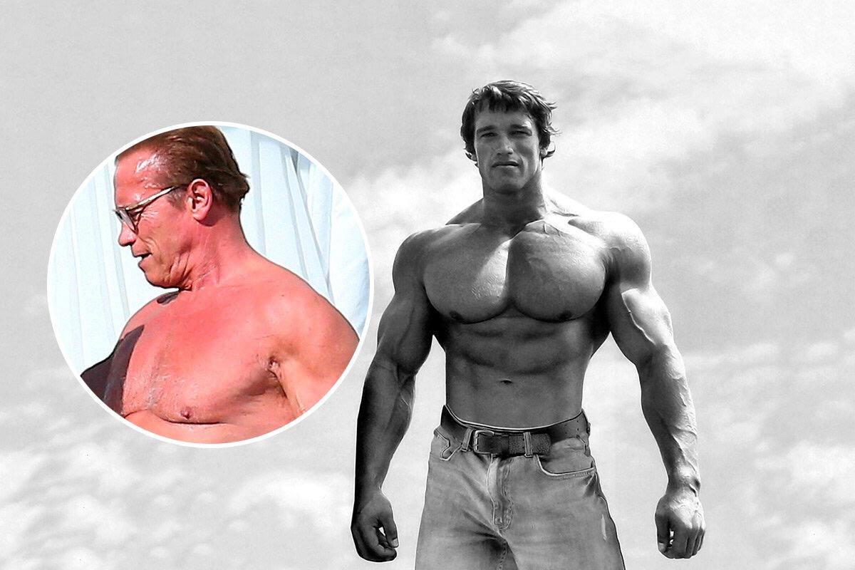 """""""Cuando me miro en el espejo, vomito"""": Arnold Schwarzenegger"""