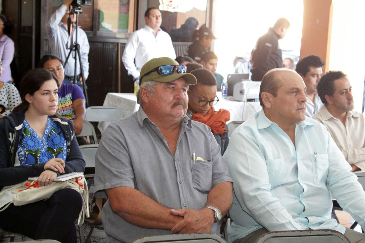 Celebran consulta pública deproyecto Central Eólica de la Península