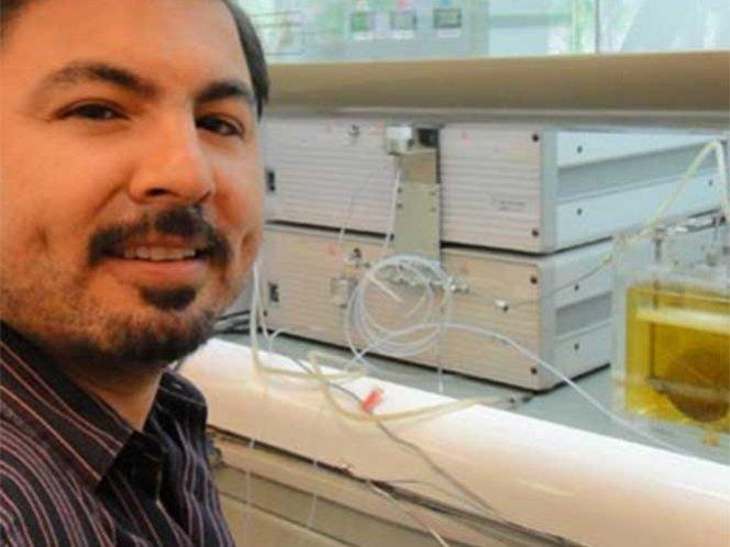 Mexicano genera electricidad y gas a partir de la orina