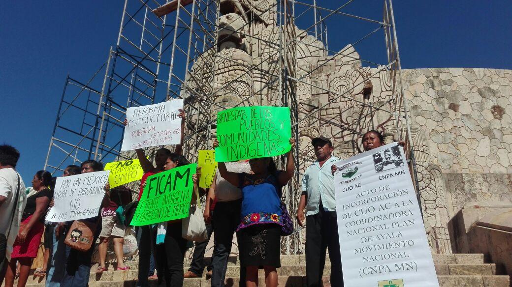 "Reclaman campesinos ""No a transgénicos en Yucatán"""