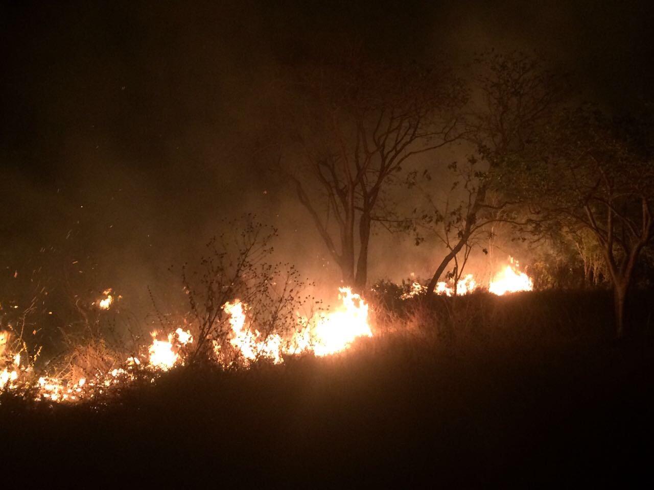 Incendio cercano a fraccionamiento Los Héroes, al oriente de Mérida