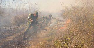 incendio_municipios2