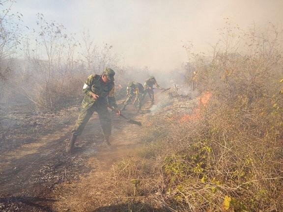 Yucatán, sin incendios agrícolas activos