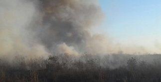 incendio_municipios3