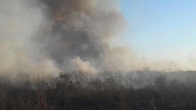 En abril se suspenderán quemas agrícolas