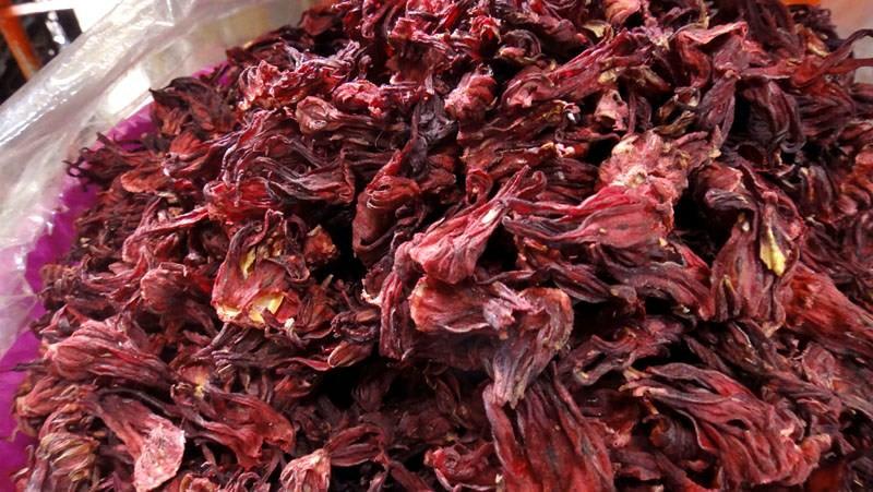 Jamaica, más efectiva que cloro para matar bacterias: científico