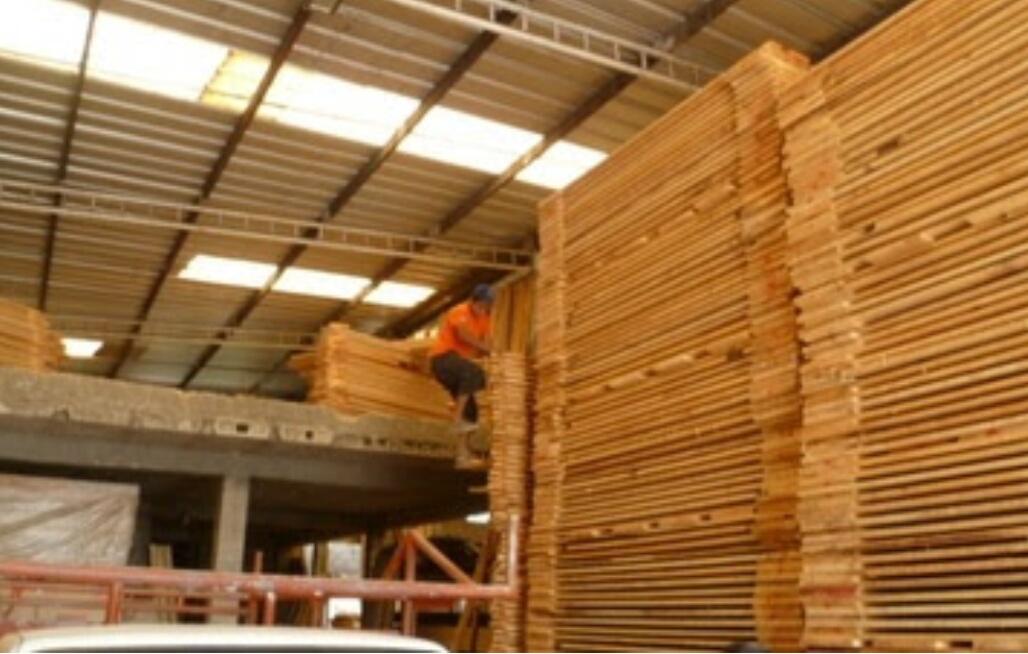 Aseguran madera de ilegal procedencia en Mérida